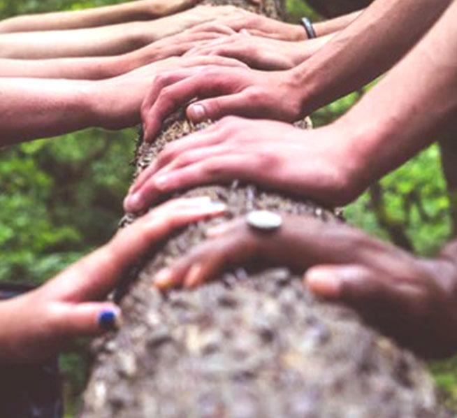 Développer l'organisation et le collectif